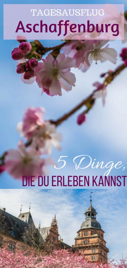 Tagesausflug Aschaffenburg - 5 Dinge, die du erleben kannst