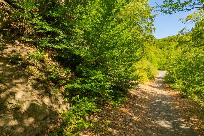 Leichte Wanderung in Hessen - Hagenstein-Route am Edersee