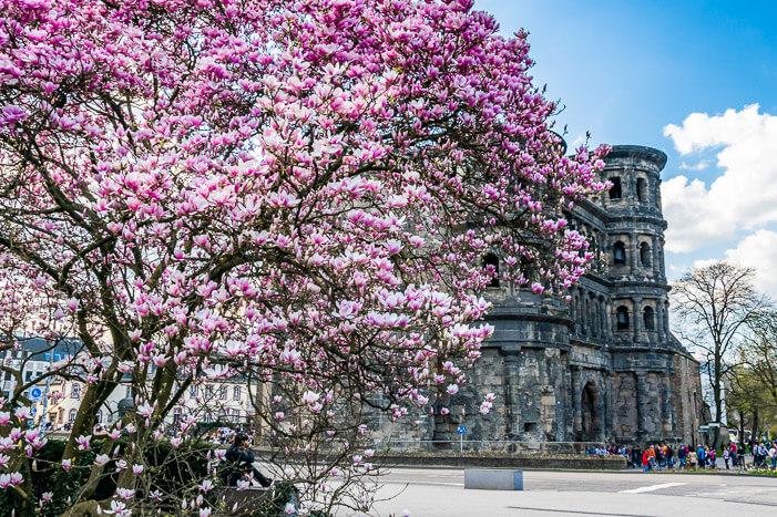 Porta Nigra in Trier von außen im Frühling