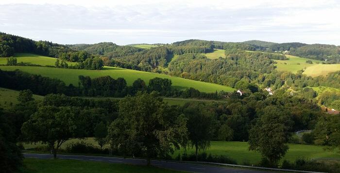 Wald Michelbach