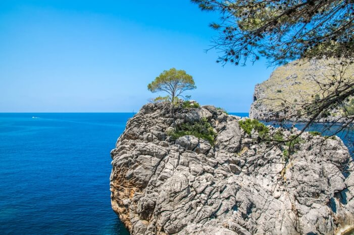 Tagesausflug auf Mallorca