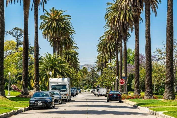 Eine schmale Straße mit Palmen und im Hintergrund das Hollywood Zeichen