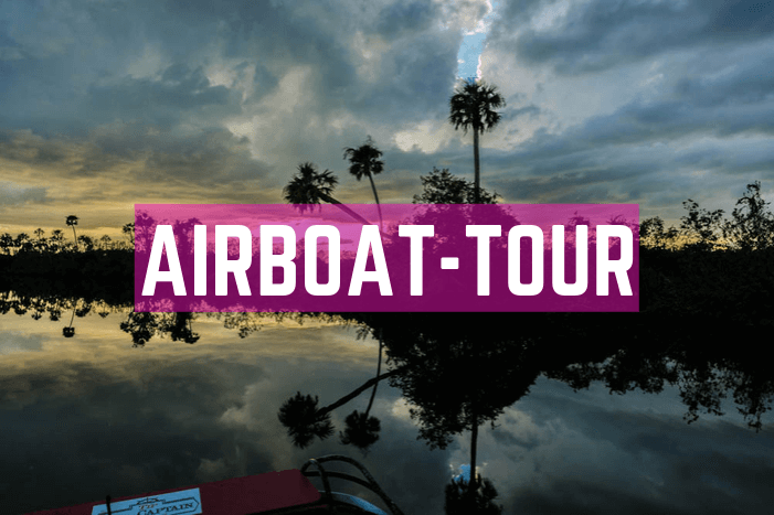 Airboat Tour in Florida